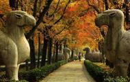 2014中国(南京)旅游电子商务大会暨旅游大数据营销论坛